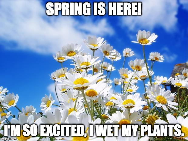 Spring Has Sprung! Time to LOL