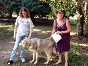 RV animals wolf